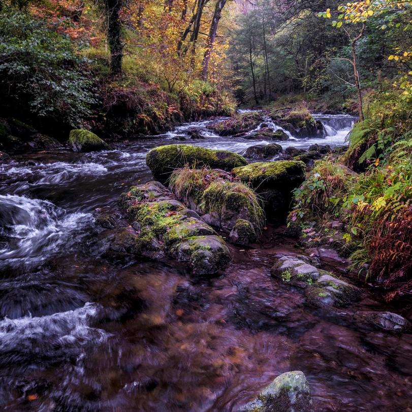 Watersmeet by Martin Gillman