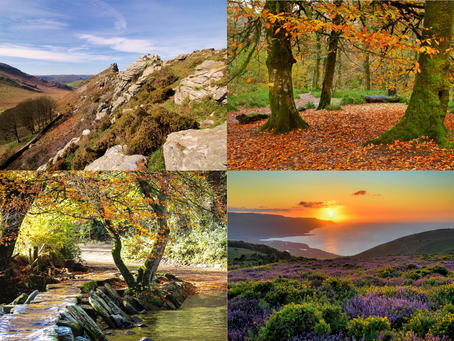 Autumnal Activities on Exmoor