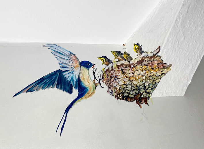 Quiet Swallows in The Exmoor Snug