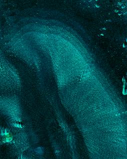 Bildschirmfoto 2020-12-01 um 06.23.15.pn