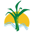 ssp logo small.png
