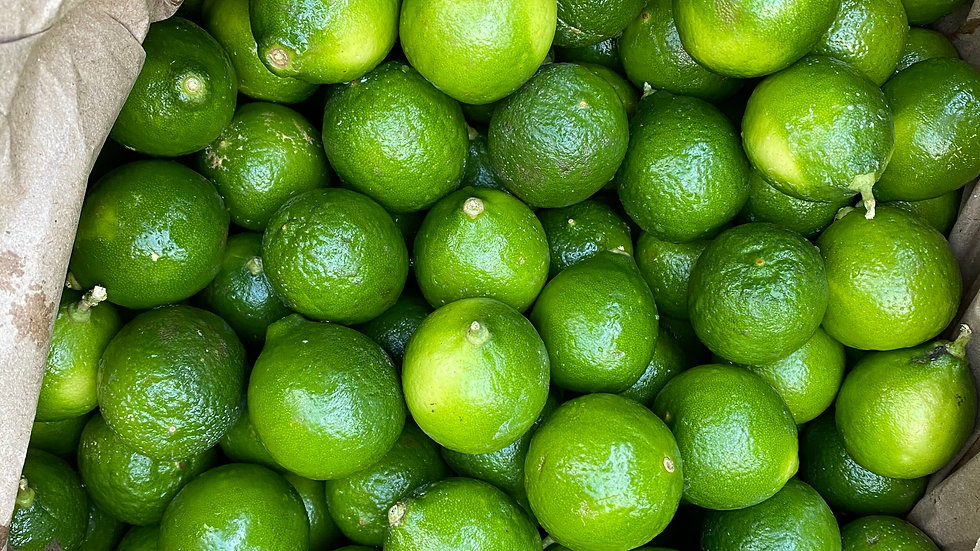 7-9Lbs Seeded Key Lime
