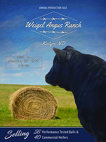 weigel book cover.png