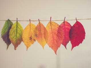 Die Blätter fallen, fallen wie von weit