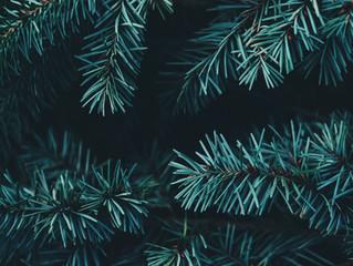 Wann fängt Weihnachten an?