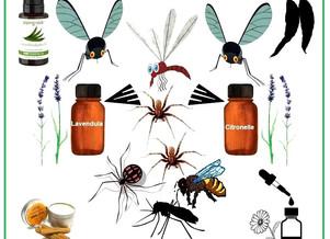 Éviter Les Piqûres d'Insectes Grâce Aux Huiles Essentielles