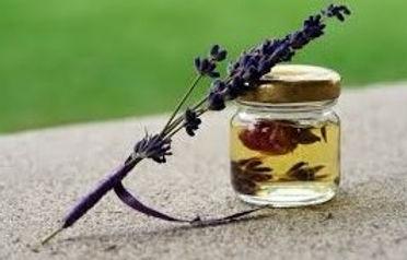 aromathérapie macération de plantes lavande