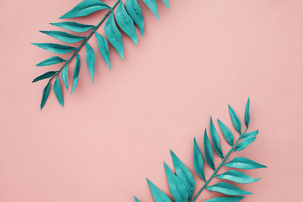 beautiful-blue-border-leaves-pink-backgr