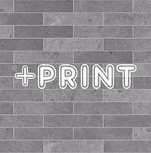 Plus Print.png