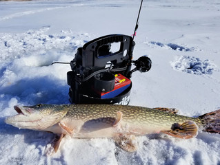 Cold Conditions and Limiting the Weight