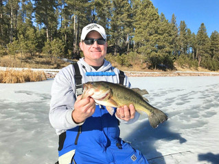 Black Hills Area Fishing Report