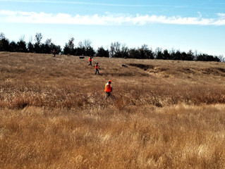 SD Pheasant Opening Weekend--Not What I Expected