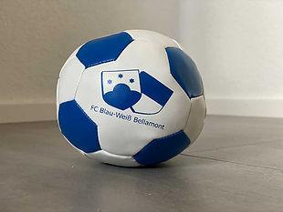 FCB-Kinderball.jpg