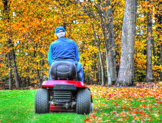 mulching-autumn-leaves-1500428182yd8.jpg