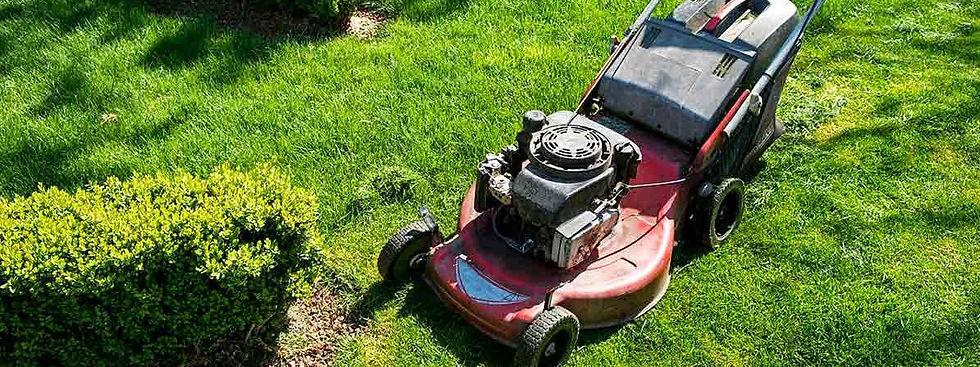 Cropped mower.jpg