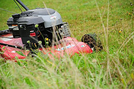 lawn-mower-grass-mulch-rush-meadow.jpg