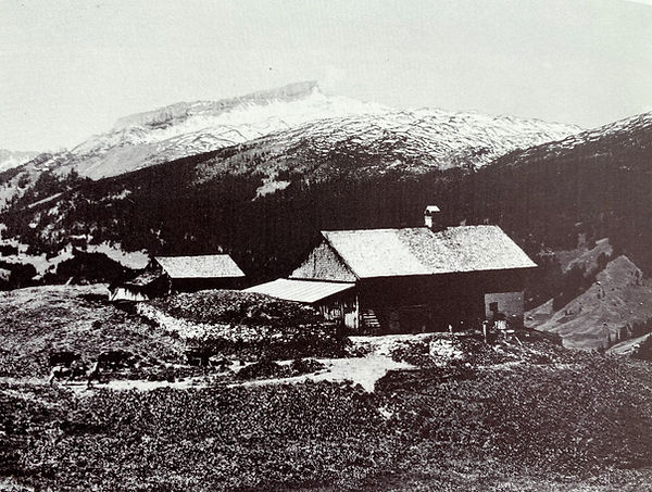 Mittelalpe