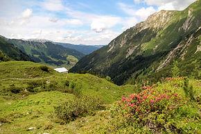 Obere Gemstelhütte / Alpe