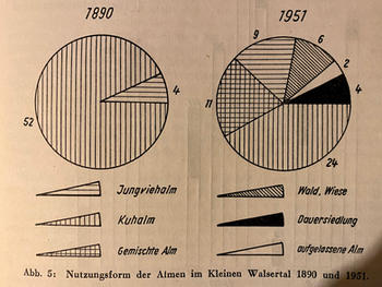 Nutzungsformen der Alpen im Kleinwalsertal