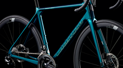 New Specialissima Disc Green