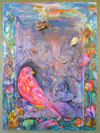 rosy finch (taos dream)