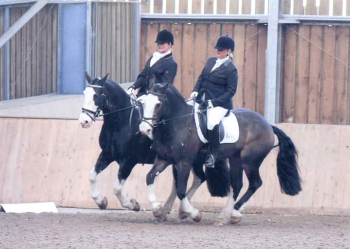 Pairs Dressage to Music
