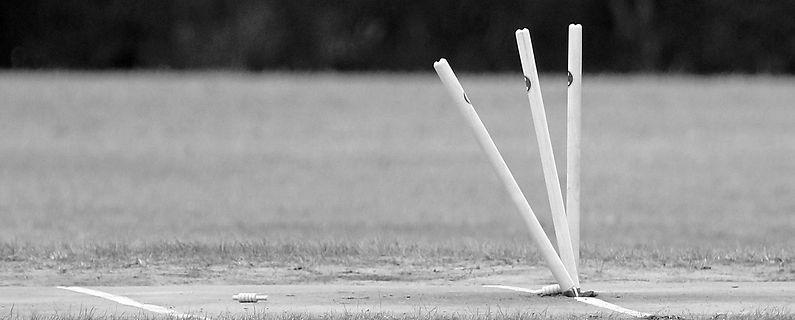 Cricket Stumps Cricket Training Equipment T20 instruction