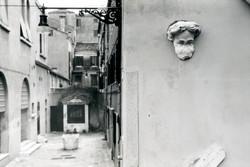 Fellow in Venice
