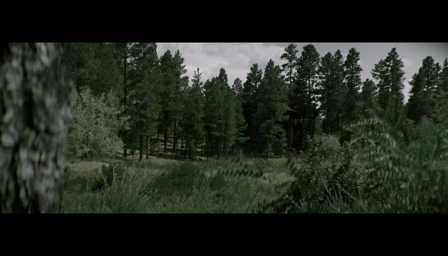 Screen Shot 2021-10-02 at 12.38.38 PM.png