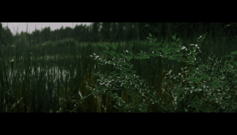 Screen Shot 2021-10-02 at 12.40.40 PM.png