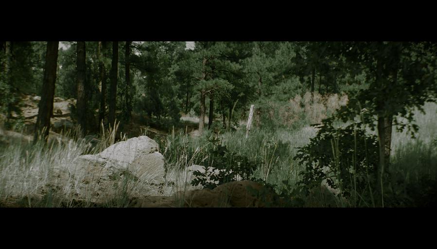 Screen Shot 2021-10-02 at 12.38.27 PM.png