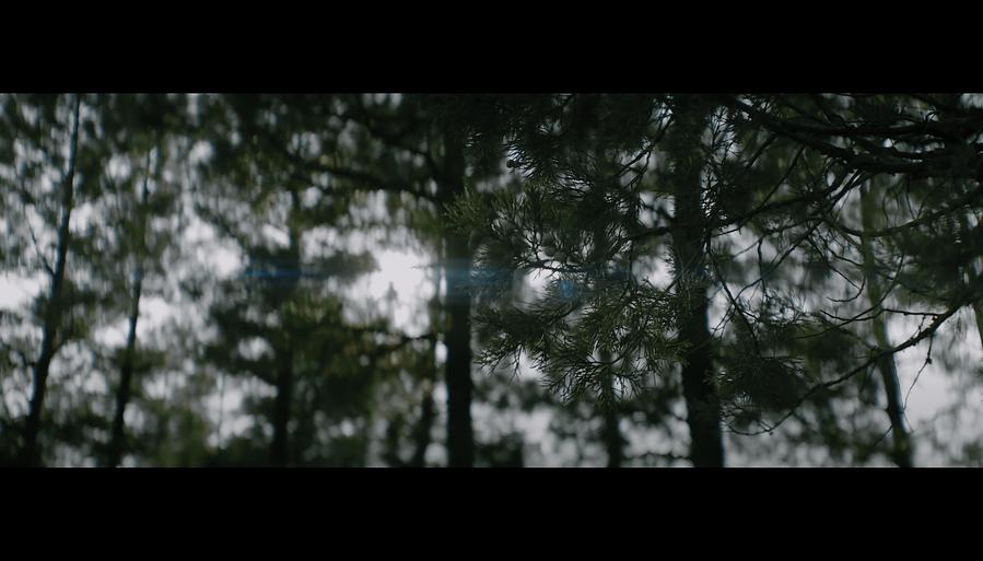 Screen Shot 2021-10-02 at 12.41.13 PM.png