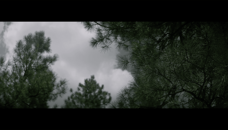 Screen Shot 2021-10-02 at 12.38.47 PM.png