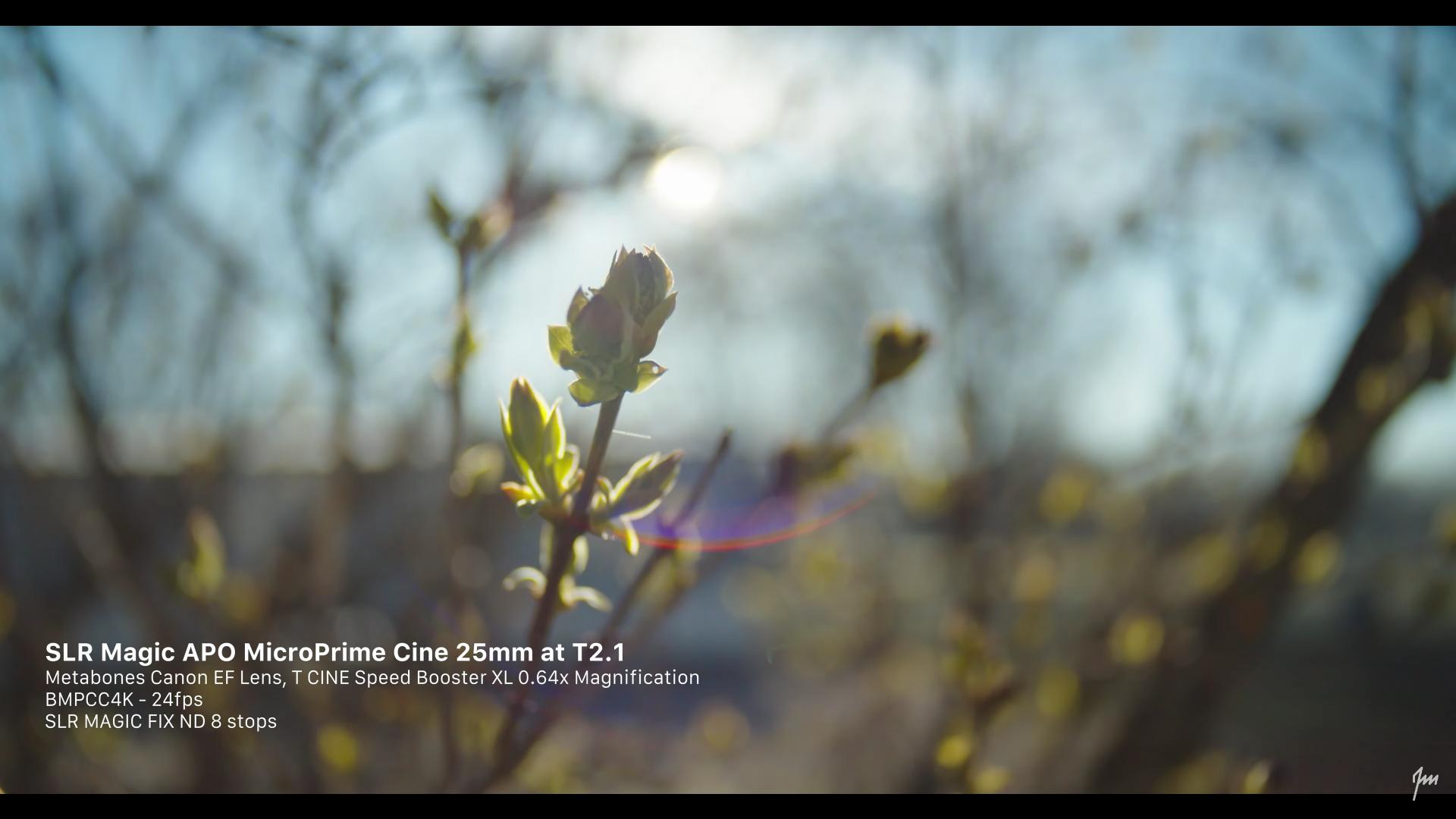 Screen Shot 2020-08-04 at 5.41.37 PM.png