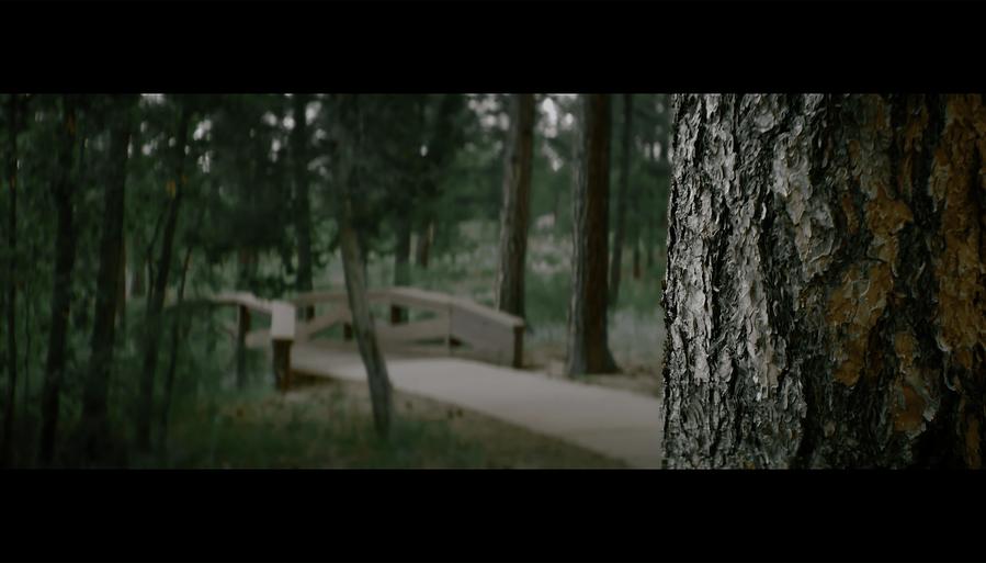 Screen Shot 2021-10-02 at 12.39.04 PM.png