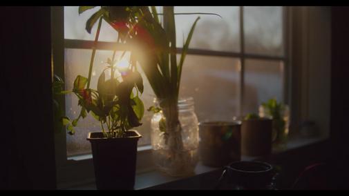 Screen Shot 2021-02-10 at 12.07.35 PM.pn
