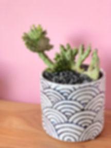 Medium Planter.jpg