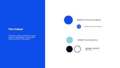5. The Colour.jpg
