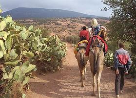 Atlas Camel Trek (10).JPG