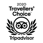 TripAdvisor_2020_Travellers_Choice.png