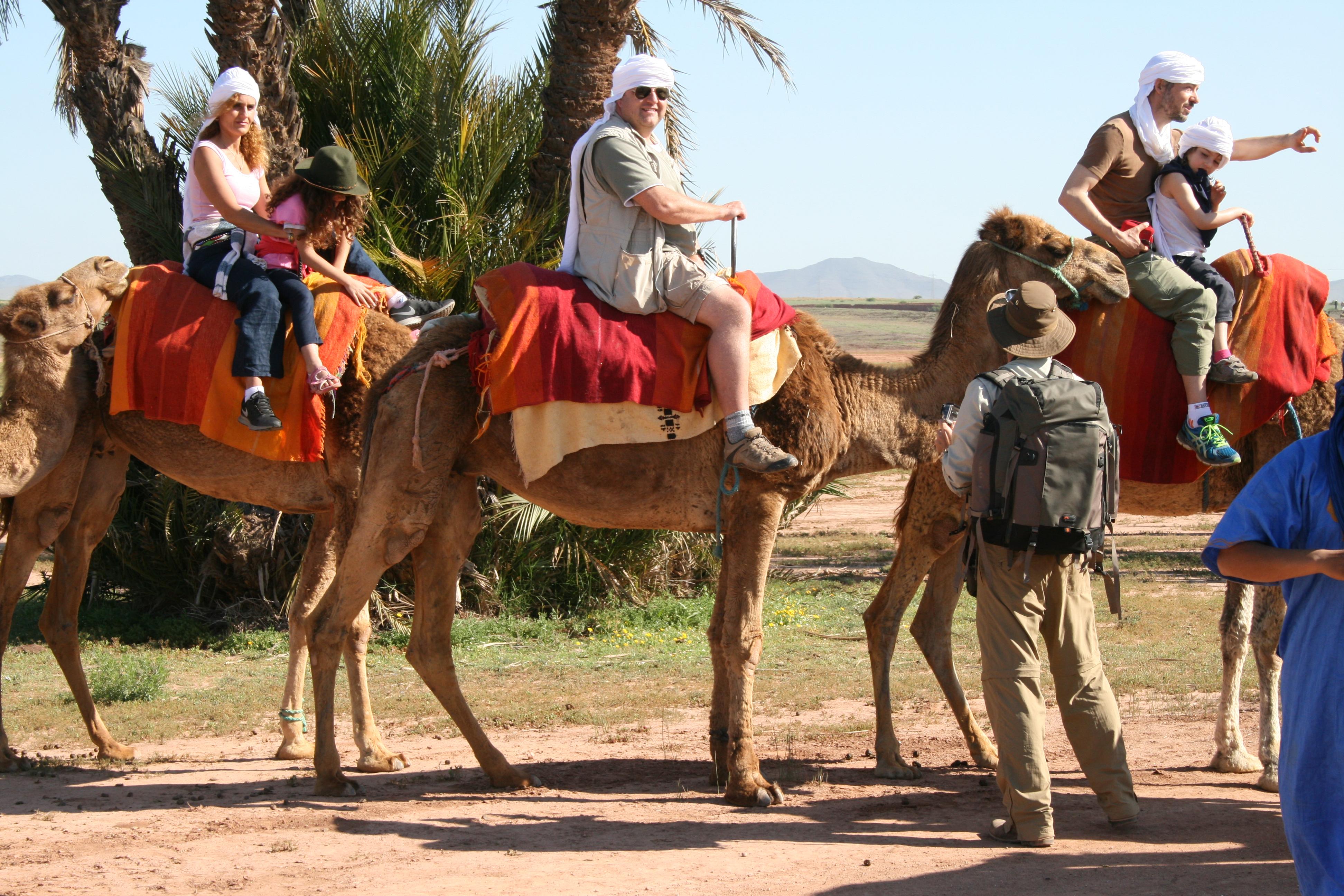 Camel Ride Marrakech (5)