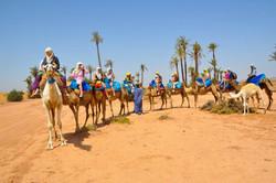 Camel Ride Marrakech (2)