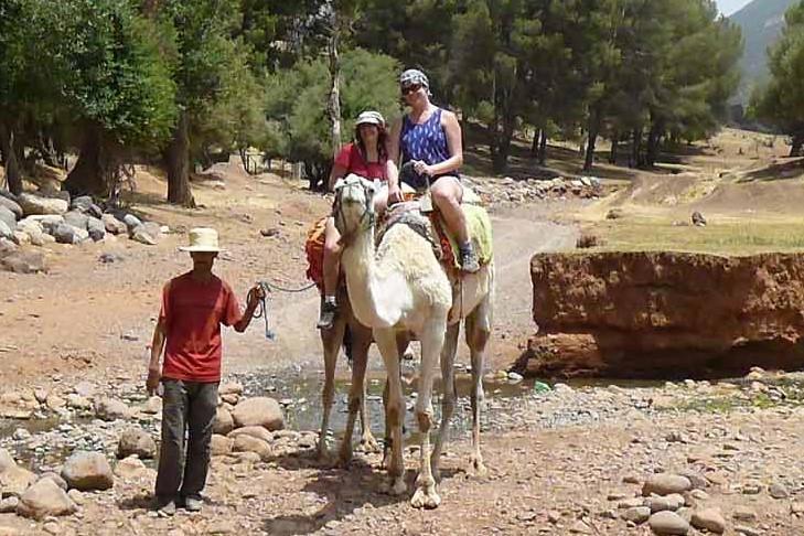 Atlas Camel Trek (12)