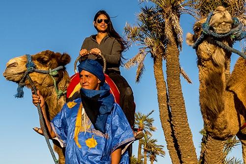Camel Ride Marrakech (4)