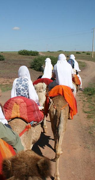 Camel Ride Marrakech (6).JPG