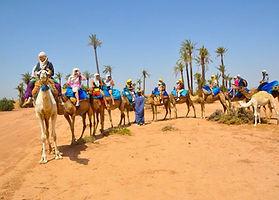 Camel Ride Marrakech (2).jpg