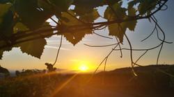 sunrise-1615892