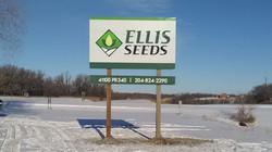 Ellis Seeds 6x10