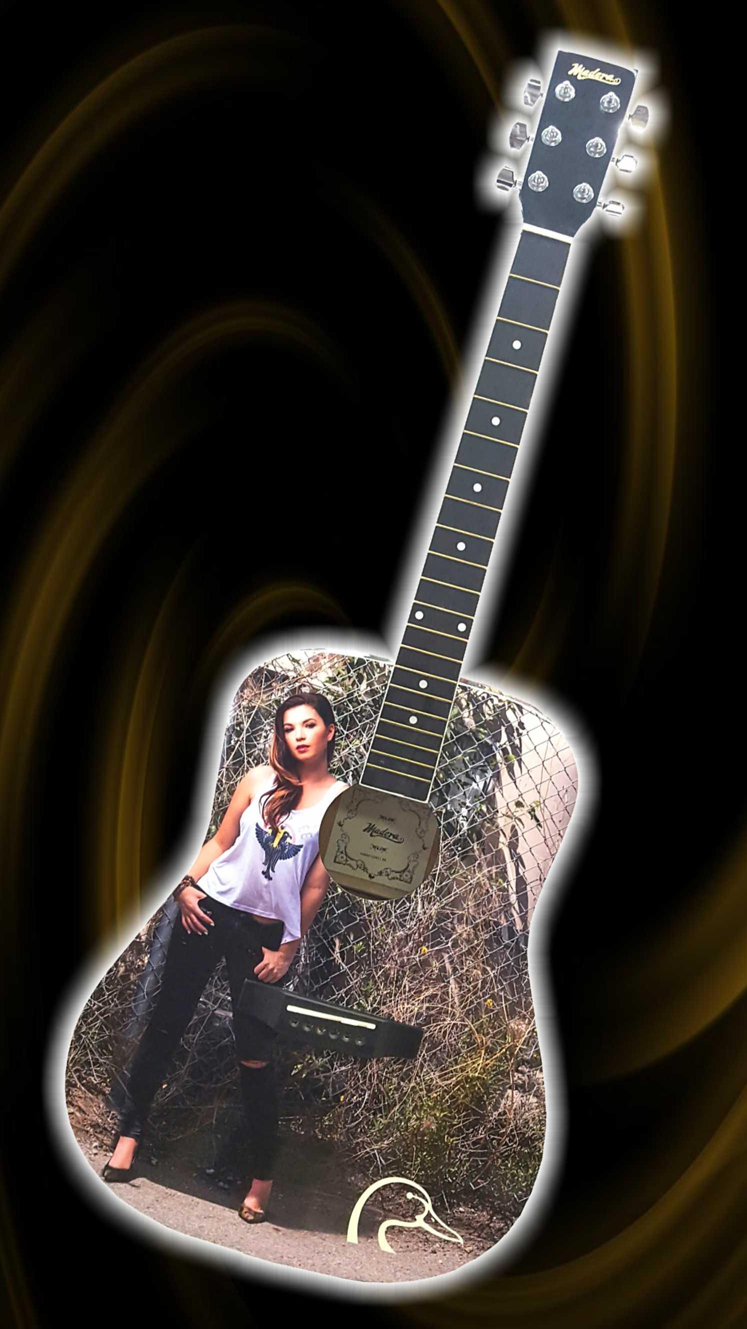 DUCS guitar
