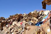 Cardboard Recycling Center, Albuquerque, NM